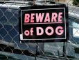 Teen dies in pit bull attack while trespassing in Texas backyard
