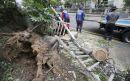 Powerful typhoon causes minor injuries, damage in S. Korea